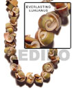 Everlasting Luhuanus Shell Beads